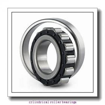 3.543 Inch | 90 Millimeter x 6.299 Inch | 160 Millimeter x 1.181 Inch | 30 Millimeter  CONSOLIDATED BEARING NU-218 M  Cylindrical Roller Bearings