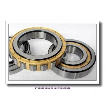 3.15 Inch | 80 Millimeter x 6.693 Inch | 170 Millimeter x 1.535 Inch | 39 Millimeter  CONSOLIDATED BEARING N-316 M  Cylindrical Roller Bearings