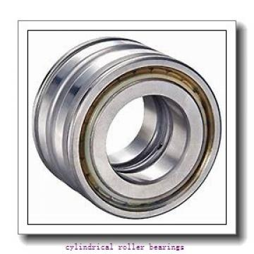 3.346 Inch | 85 Millimeter x 7.087 Inch | 180 Millimeter x 1.614 Inch | 41 Millimeter  CONSOLIDATED BEARING N-317E  Cylindrical Roller Bearings
