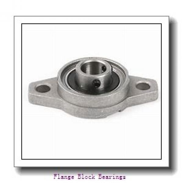 DODGE F4B-GT-106  Flange Block Bearings #1 image